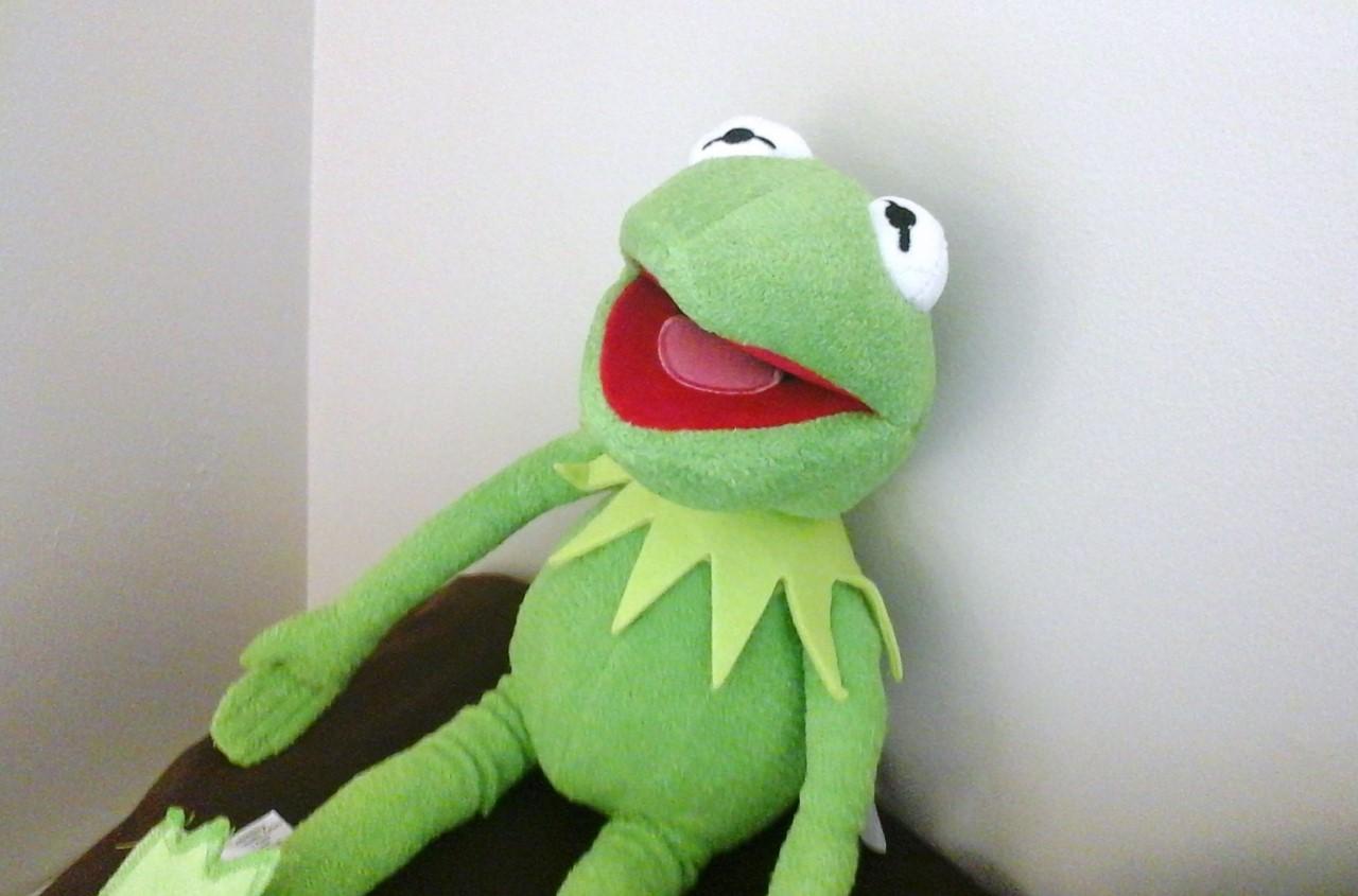 My Kermit plushie.