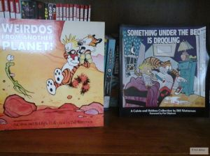 I got these Calvin and Hobbes books at a library sale last month. I still find the series pretty good.