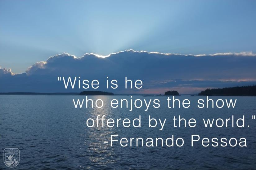 Wednesday Wisdom: FernandoPessoa
