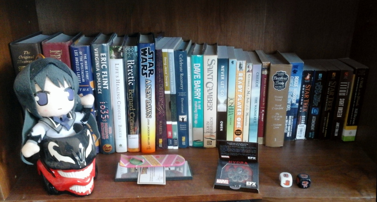 Photo Challenge Double-play:Book(shelves)
